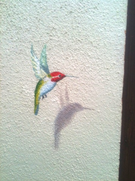 Hummingbird close up mural