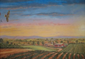 Farm Lands Panoramic Mural hawk