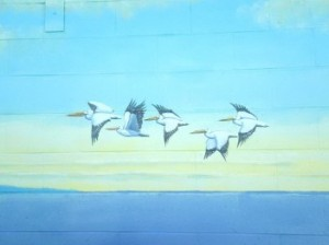 Flying pelicans mural